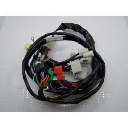 Cablage, faisceau electrique - CBX1000 z/a