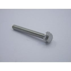 Vis M6 x 50mm - Hexagonale à collerette - inox - (x1)